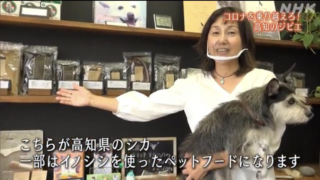 メディア掲載記事 NHK高知放送局